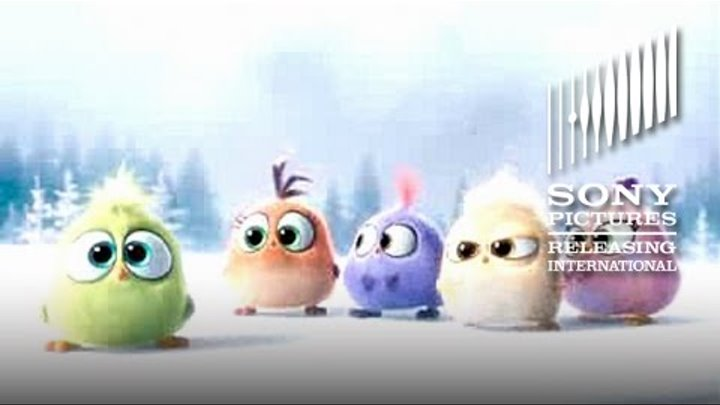 The Angry Birds Movie – Happy Christmas from the Hatchlings! - At Cinemas May 2016