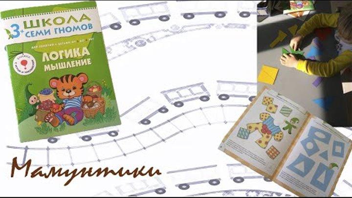Развитие ЛОГИКИ и мышления у детей по книжке Школы семи гномов