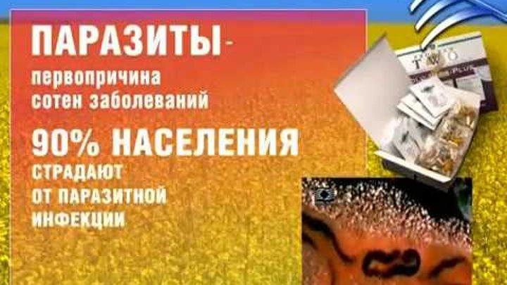 Программа 2 Коло-вада Плюс. Прямой эфир М. Федоренко
