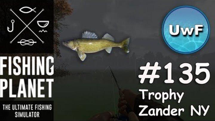 Fishing Planet #135 | Trophy Walleye / Zander New York - Emerald Lake |  Spinning Guide | German