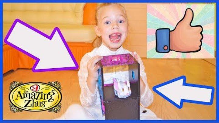 Распаковка игрушек Amazing Zhus ФОКУС для детей Удивительные ЖУ Прикольная, классная игрушка ребёнку