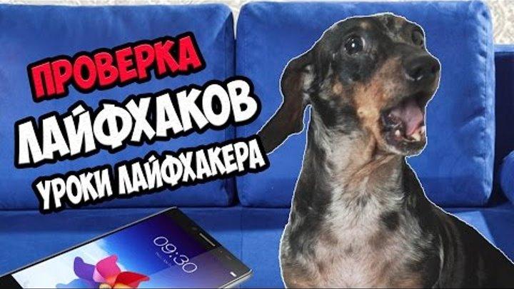 ПРОВЕРКА Лайфхаков с канала Уроки Лайфхакера