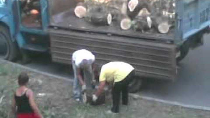 видеоролики бабы работают руками - 12