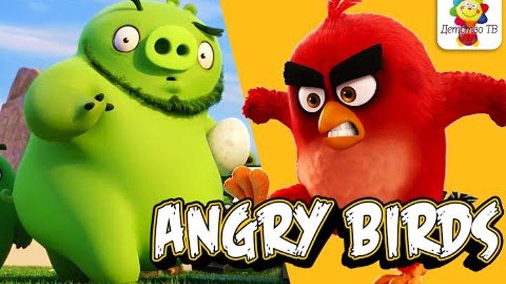 ЗЛЫЕ ПТИЧКИ - Angry Birds - Энгри Бердс - СБОРНИК серий! Мультфильмы для детей 2016