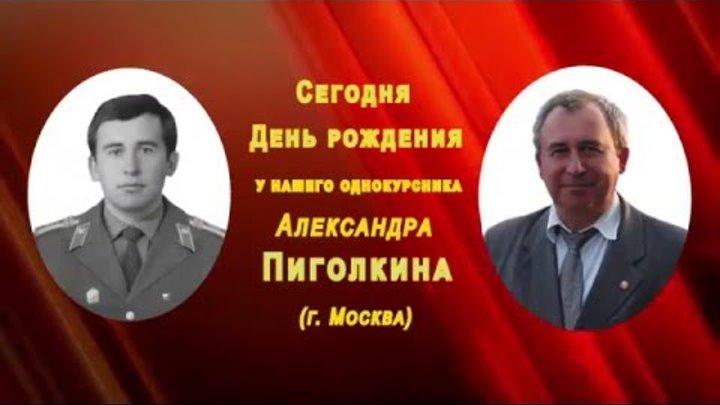 Пиголкин с ДР