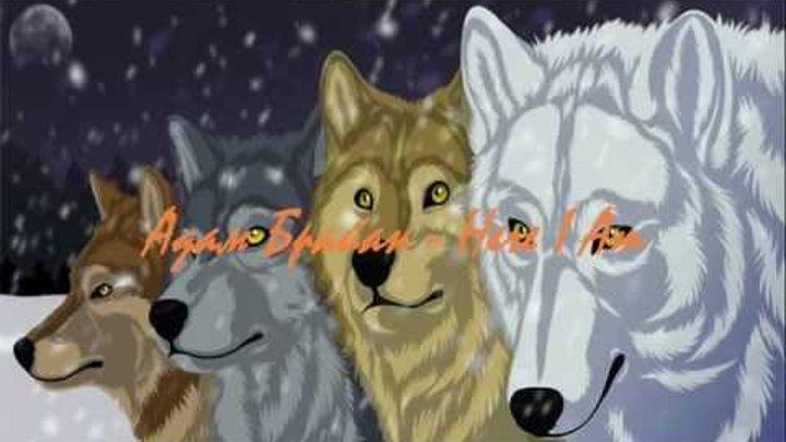 Клип про Волчий Дождь. 3 в 1.wmv