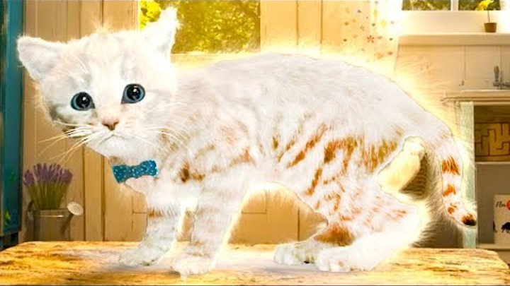 ПРИКЛЮЧЕНИЕ МАЛЕНЬКОГО КОТЕНКА мультик про котика для детей подарок конфет и желейный медведь #КИД