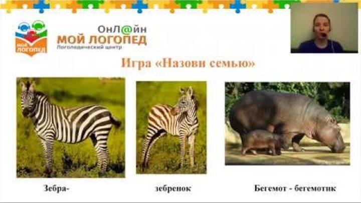 Логопед. Урок Животные жарких стран. Для детей 4 лет. Проект Мой Логопед Онлайн