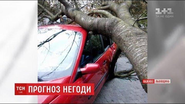 Потужний буревій дістався до західних областей України