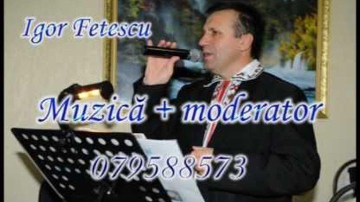 Muzica Pentru Nunti Cumetrii Si Alte Ceremonii Igor Fetescu