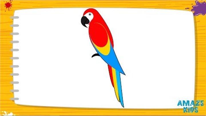 Обучающие видео. Уроки рисования карандашом для детей. Учимся рисовать попугая Ара.