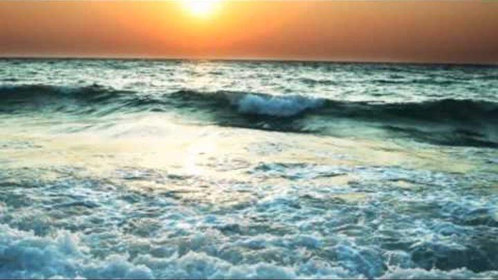 море вернулось говором чаек