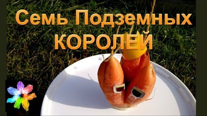 🥕 Необычные корнеплоды моркови. Шуточные стихи. Семь подземных Королей