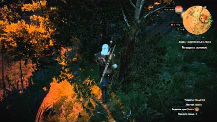 Ведьмак 3: Дикая охота. #65. Таинственные следы и Золото дураков.