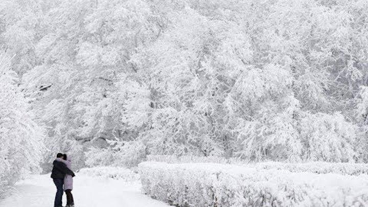 Snow Paradise of Moscow Lapland❄ Самый сильный снегопад в Москве за последние 100 лет!