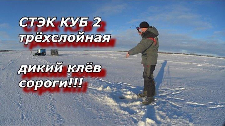 ПАЛАТКА СТЭК КУБ 2 Трёхслойная дикий клёв сороги