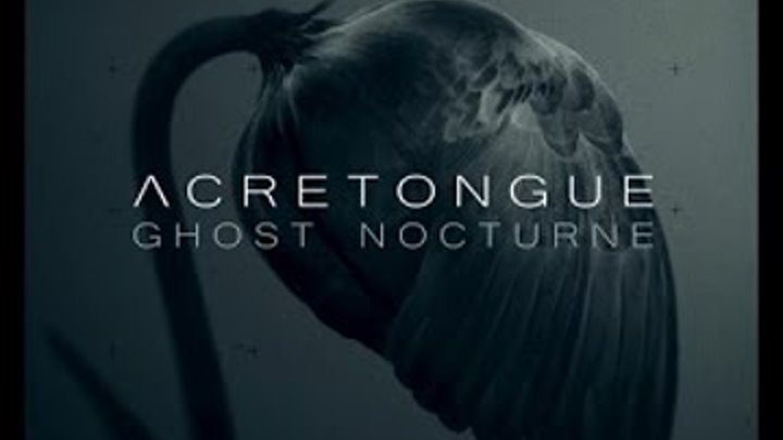 """Acretongue - Requiem [taken from """"Ghost Nocturne"""" February 1st 2019]"""