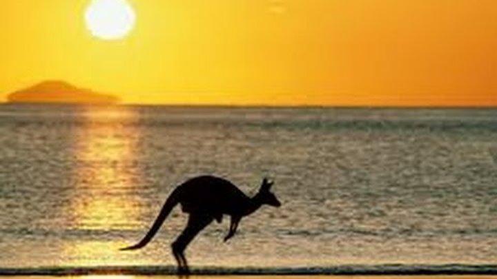 Австралия. Гостевая виза. Как увеличить шансы на получение?