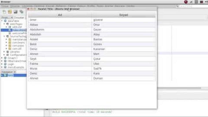 Jsf Primefaces Hibernate dataTable Example
