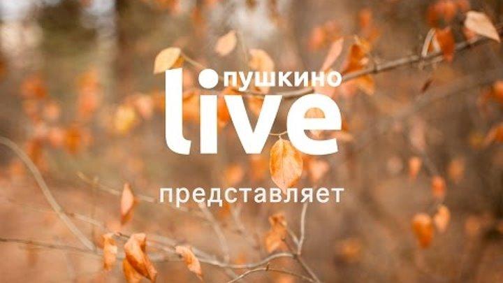 Канал Пушкино_Live. Выпуск № 1 от 23.10.2016 г. Первая в Пушкино детская парикмахерская