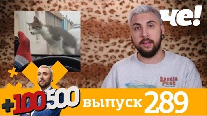 +100500 | Выпуск 289 | Новый сезон на телеканале Че!