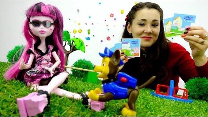 Видео про игрушки: Монстр Хай, Щенячий Патруль. Дракулаура потеряла очки! Игрушки для девочек.