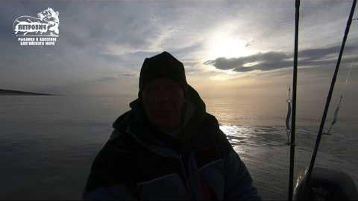 Большой улов. VLOG: Ловля лосося. Балтийское море. Троллинг.