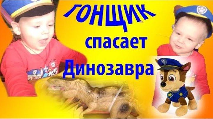 ЩЕНЯЧИЙ ПАТРУЛЬ Сезон 4 Динозавра Джордж спасает Гонщик PAW PATROL спешит на помощь Видео для детей