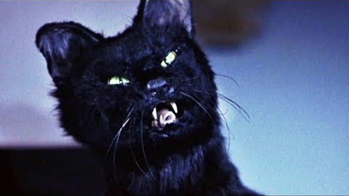 Синди Кэмпбелл против Кота   Очень страшное кино 2   2001