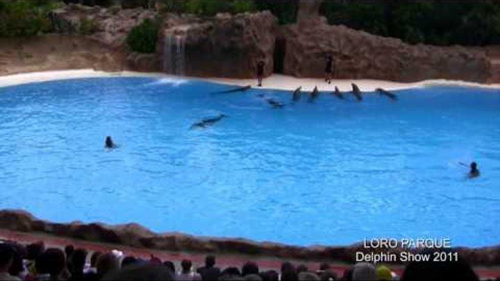 LORO PARQUE Delphin Show 2011 TENERIFE