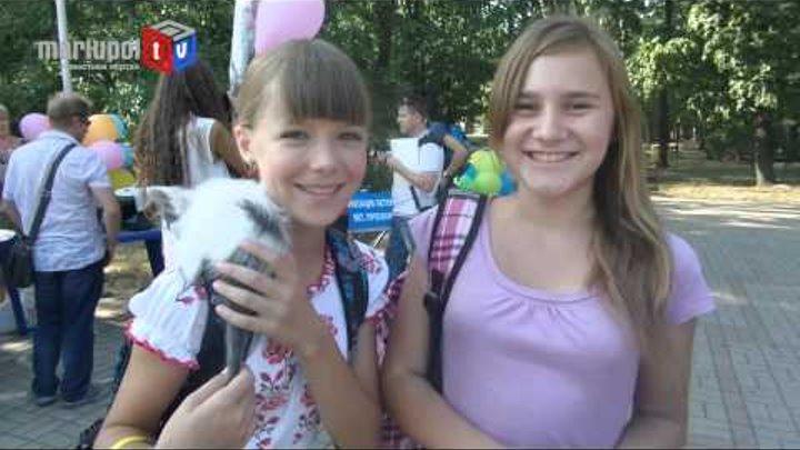 В Мариуполе искали дом для маленьких котят и щенят