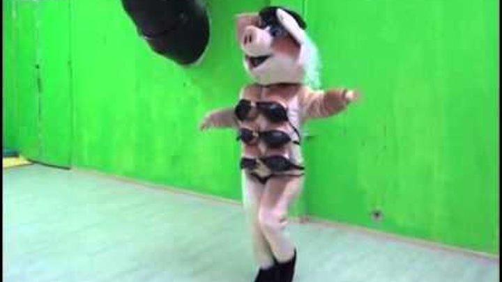 Копия видео sexy schwein maskottchen stripteas für jeden anlass zum buchen