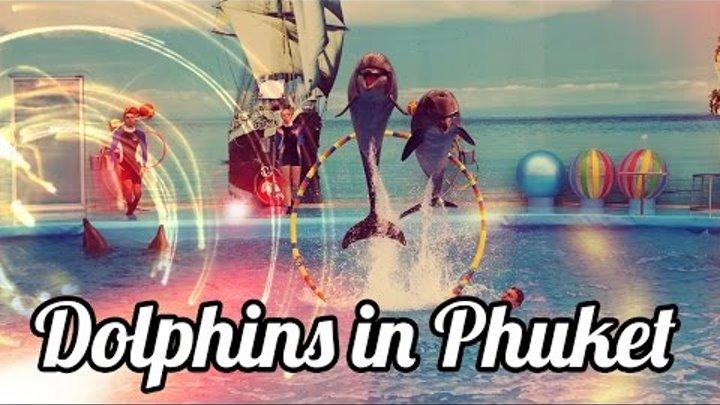 Дельфинарий Немо на Пхукете ♒ Dolphinarium Nemo Dolphins Bay Phuket