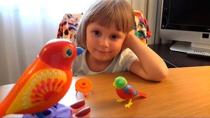 DigiBirds Silverlit Toys Unboxing Интерактивные поющие птички Видео обзор ДигиБердс Домашние питомцы