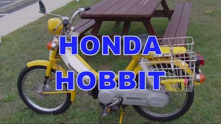 MOPED HAULING ASS!!!! (1978 Honda Hobbit Pa50-2)