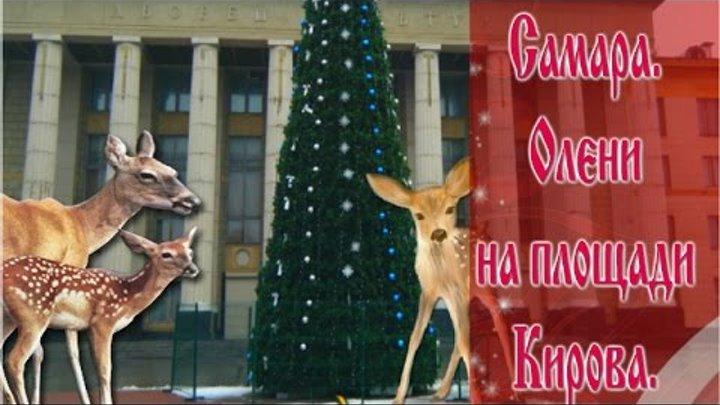 Самара.ТЦ Вива Лэнд и площадь Кирова перед Новым Годом.