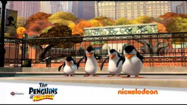 """Промо канала """"Nickelodeon HD"""""""