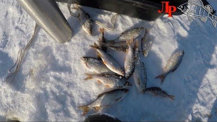 Рыбалка со льда.Новое место,ищем плотву,окуня и ловим на мотыля,жерлицы и балансиры.