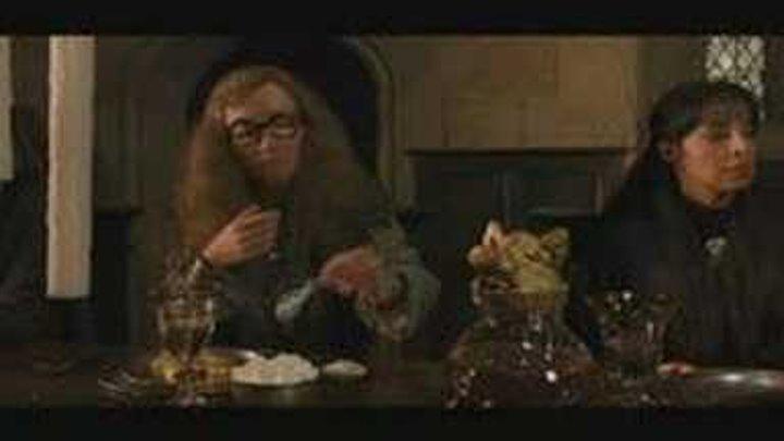 Гарри Поттер и Орден Феникса вырезанная сцена Трелони