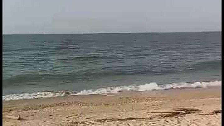 Ст. Голубицкая. Азовское море. Открываем купальный сезон 03.05.2017☝