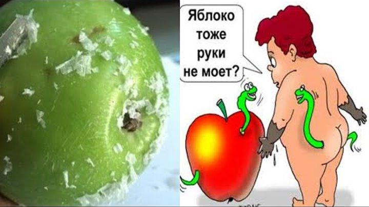 Осторожно...Яблоки!