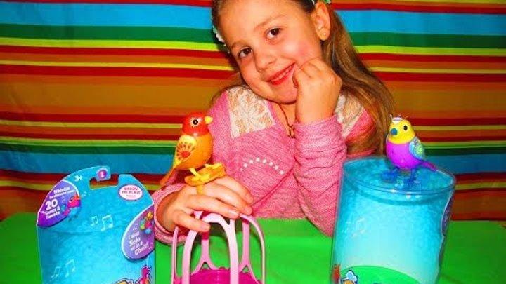 Интерактивные игрушки для девочек Поющие птички игрушки Дигибердс Птичка в клетке игрушка Digibirds