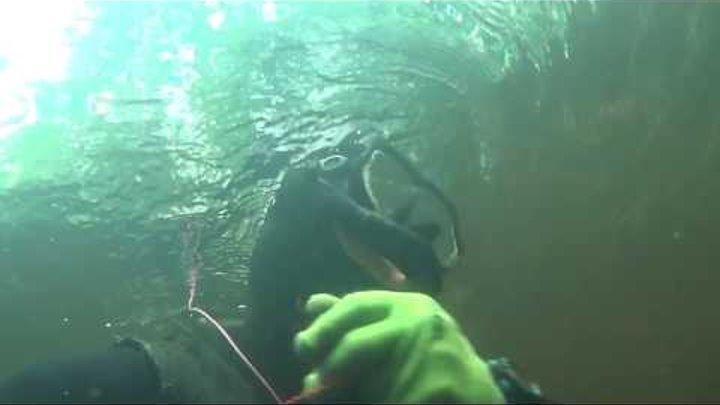 Разведка нового места ! Подводная охота