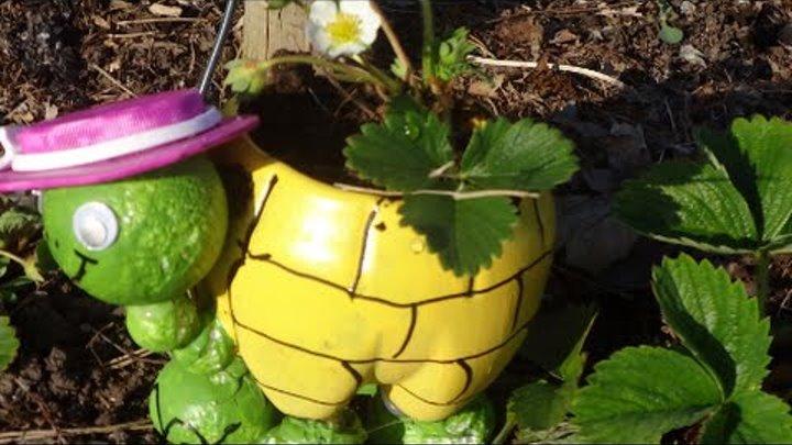 МК: Как Сделать Черепаху из Пластиковой Бутылки для Вашего Сада