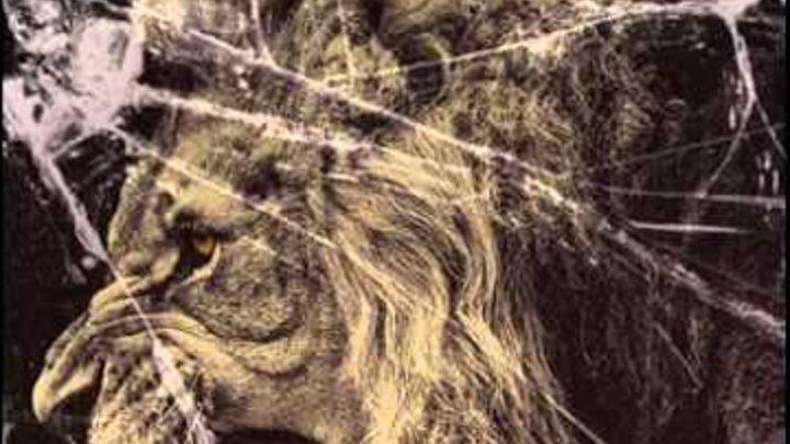 Dannic vs Bassjackers,Martin Garrix vs Icona Pop - I Don't Care Crackin Lion (MARRIC MASHUP)
