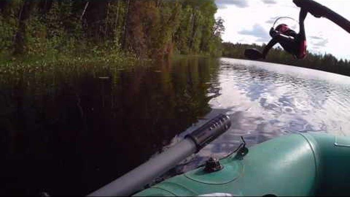 Рыбалка, лесное озеро некрупный окунь на удочку