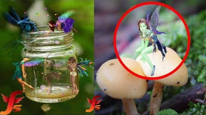 Top 5 Real Fairies Caught On Camera & Spotted In Real Life Evidence Part2