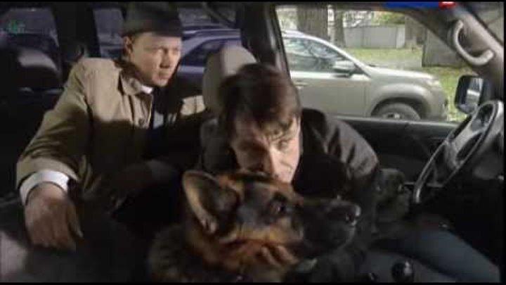 Лорд. Пёс-полицейский: сезон 1, серия 8