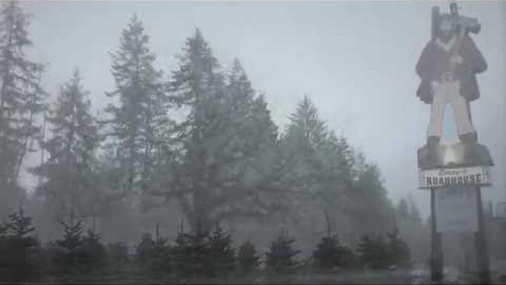 Twin Peaks Season 3 Sycamore Trees teaser