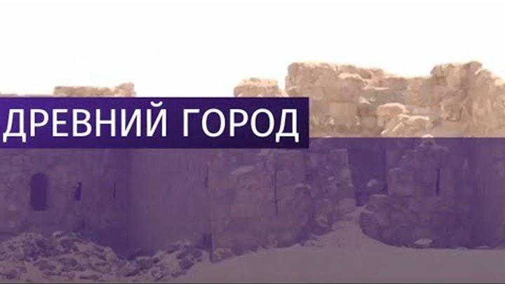 Сирийские военные освободили древний город Расафа